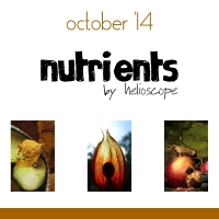 Nutrients Podcast - 10-14 (tiroko - lethe007 - shinywish)