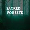 Sacred Forests (zoldszorny)