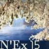 N'Ex 15 (kariliimatainen)
