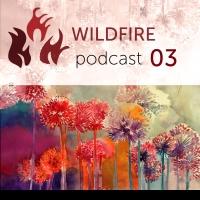 Wildfire - 03 (takmaj)