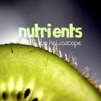Nutrients - 18 (violently_chaotic)