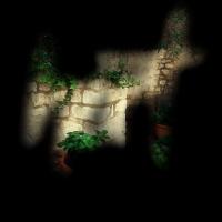 Hort 1 (fiorelladepietro)