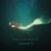 Worlds Between Us Vol 5 (sturmideenkind)