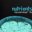 nutrients-november-16-stefanvdsflickr