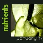 nutrients-january-17-ellejayedeeflickr