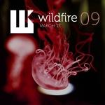 Wildfire - March '17 (pagarneau)